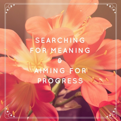 Meaning-Progress